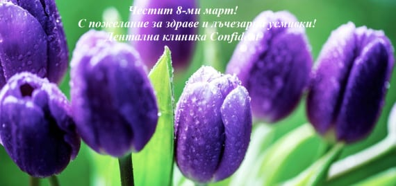 snimki8-570x269